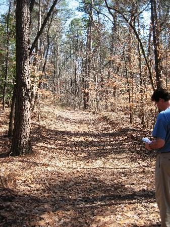 Logoly State Park: Hiking Trail