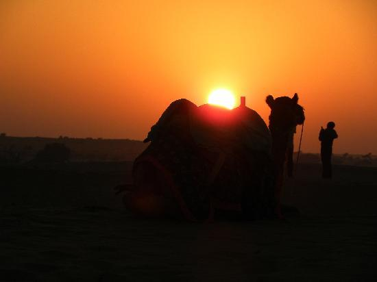 Jaisalmer, Inde : sunset at sam
