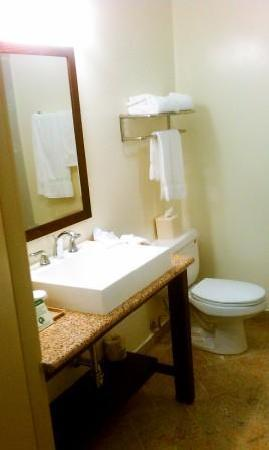 Clarion Hotel-Downtown Oakland: Pretty nice sink set up.  Clean.