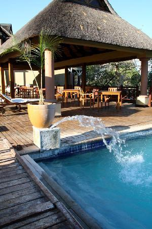 Epacha Game Lodge and Spa: Swimming Pool