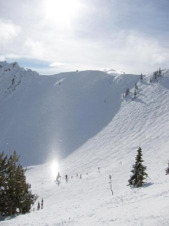 Auberge Kicking Horse B&B: Beautiful day at Kicking Horse, neat shimmer from the snow in the sun!