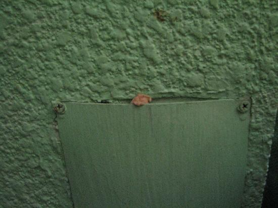Caribe Internacional: Chewing gum on wall next to bed