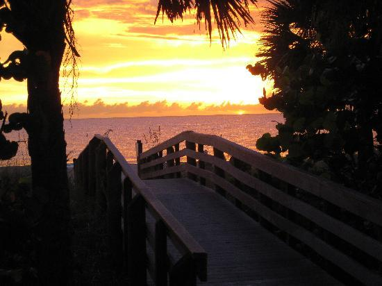 Indian Rocks Beach, Floryda: Blissful walks and sunsets on the Gulf