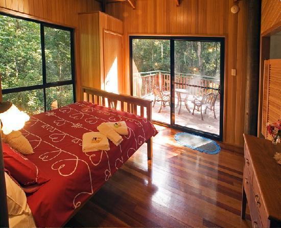 Springbrook Lyrebird Retreat: Large windows look out to the rainforest