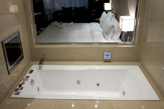 Jacuzzi Bath Tub With Viewsonic Small Lcd Panel Picture Of The