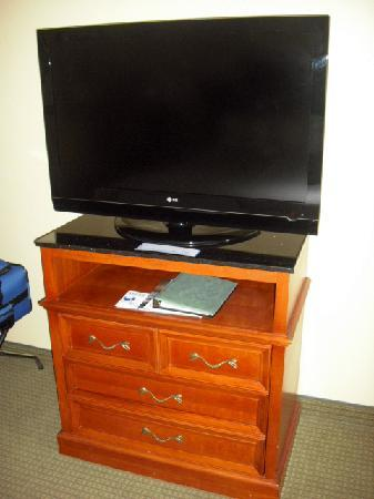 Hilton Garden Inn Jacksonville JTB / Deerwood Park: Large, flat screen TV