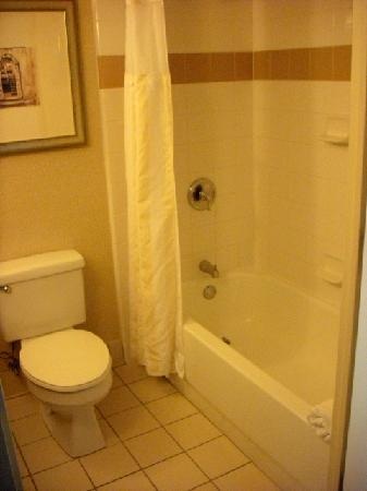 Hilton Garden Inn Jacksonville JTB / Deerwood Park: Tub and Commode