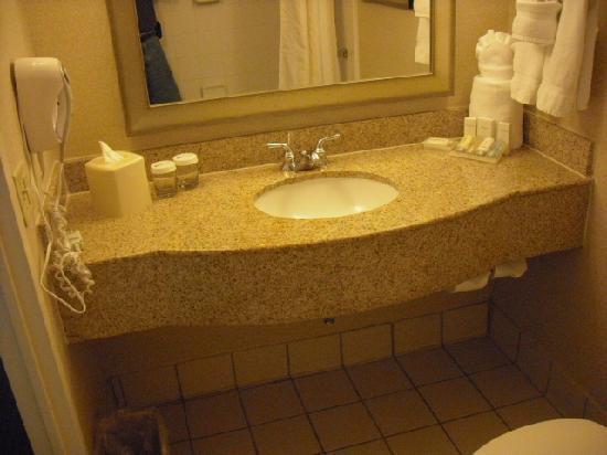 Hilton Garden Inn Jacksonville JTB / Deerwood Park: Vanity