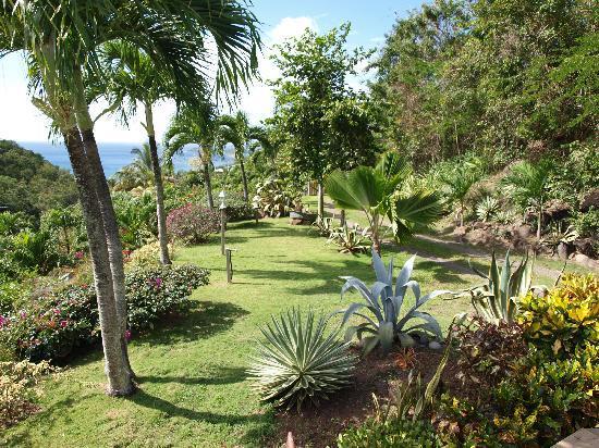 Jardin de la Koumbala
