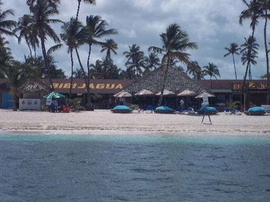 Acqua Beach Club: Perfect beach location