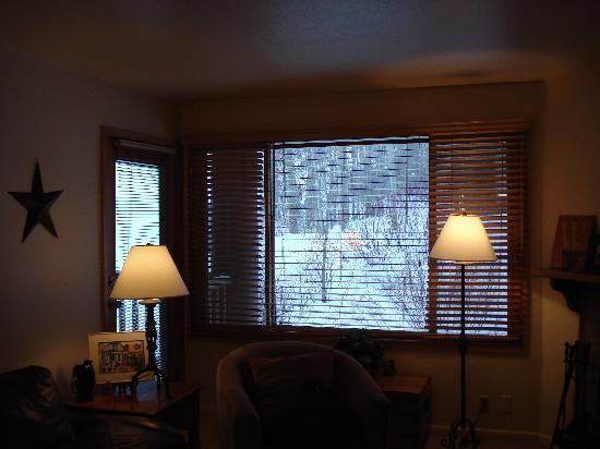 Snow Flower Condominiums: living room