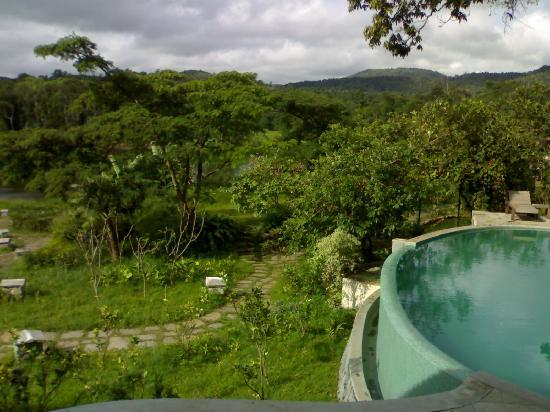 Flameback Lodges: Pool view