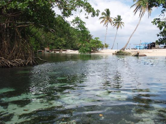 Grand Paradise Samana : freshwater pool on atv tour