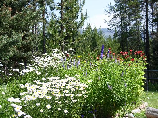 Moss Mountain Inn: Our flower gardens provide bouquets for guest rooms and dining tables.