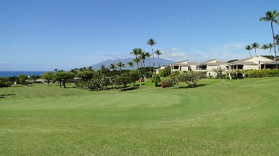 Wailea Golf Club: 海の見えるホールもいくつかあり...