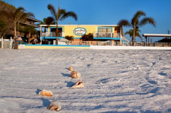 Plaza Beach Hotel - Beachfront Resort: Directly on the Beach