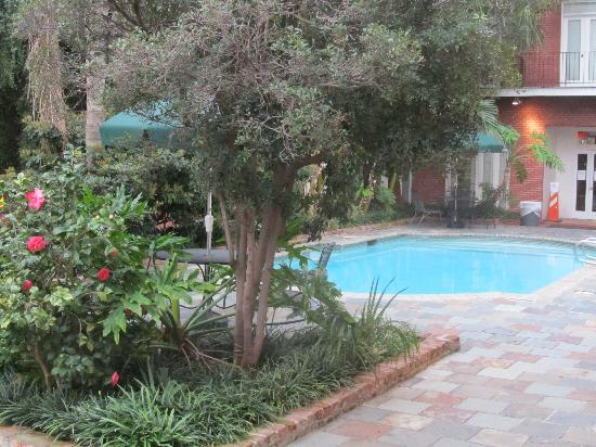 Chateau Orleans: Pool area