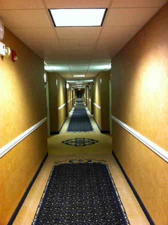 Holiday Inn Express Gastonia: Hallway