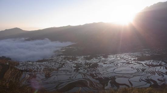 Yuanyang Pengtian: 朝日を浴びる棚田