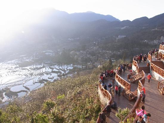 Yuanyang Pengtian: 棚田の反対側は観光客が棚田のよう