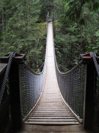 Lynn Canyon Park: Lynn Canyon Suspension Bridge