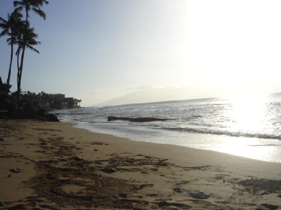 Hale Maui Apartment Hotel: the beach