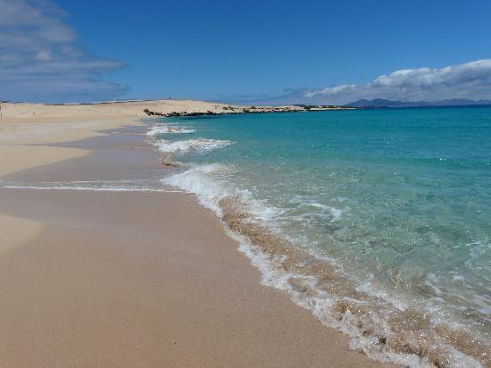 Atlantic Garden Beach Mate: La spiaggia di Corralejo alle dunas
