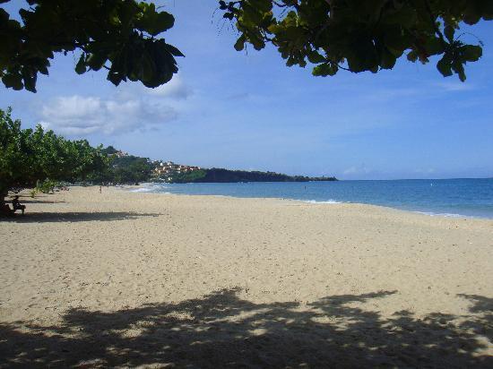 South Coast, Γρενάδα: es geht auch einsam: grand anse beach