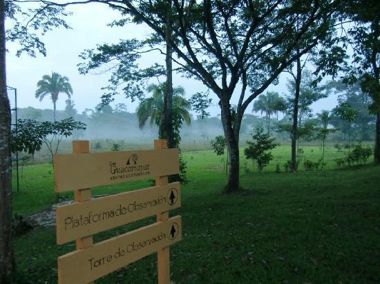 Ara Macao Las  Guacamayas: In der parkartigen Anlage