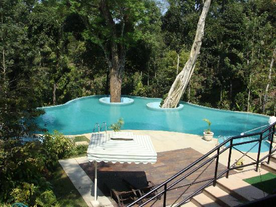 Pool Picture Of The Windflower Resort And Spa Coorg Suntikoppa Tripadvisor
