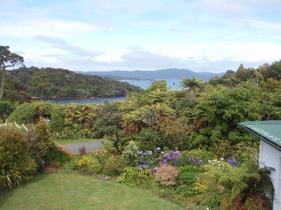 Stewart Island, New Zealand: View from the shared room.