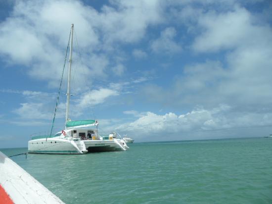 Isla Caribe Beach Hotel: notre catamaran