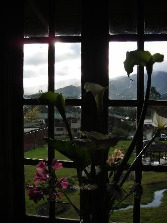 Los Quetzales Lodge & Spa: view from window of suite