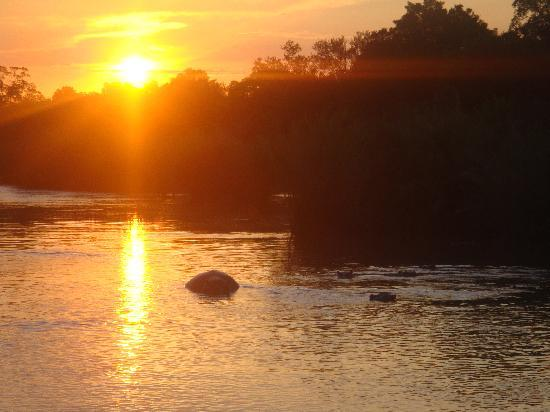 Londolozi Private Game Reserve : Sunset with the hippos