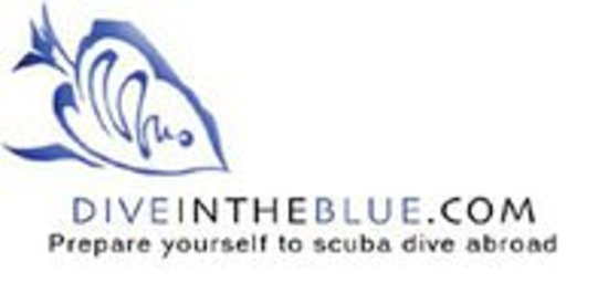 Dive in the Blue