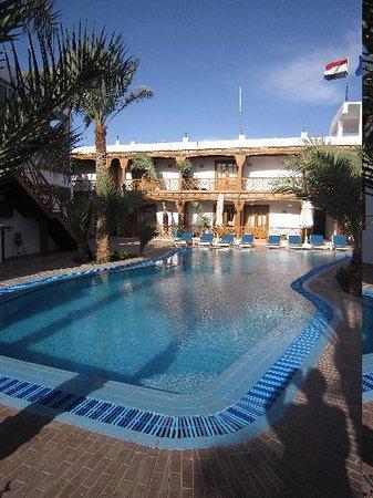 Acacia Dahab Hotel: La piscine et les chambres autour