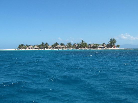 Palma Real Beach Resort & Villas: Excursion Cayos Cohinos, magnifique