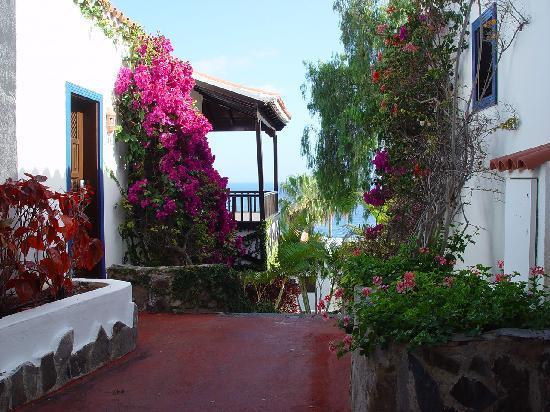 Hotel Jardín Tecina: Les allées de l'hôtel
