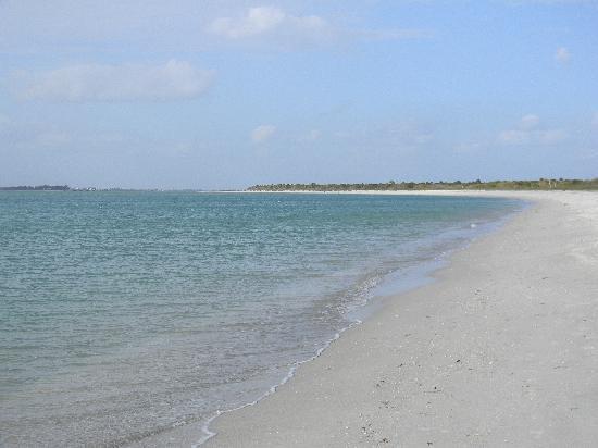 Cayo Costa State Park: Gulf Side