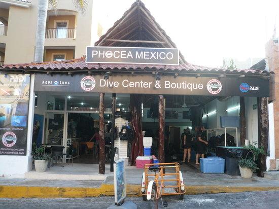 Phocea Mexico : le club Phocéa