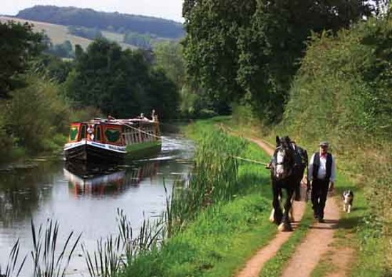 Tiverton, UK: Horse-Drawn Barge (Last in the South West)