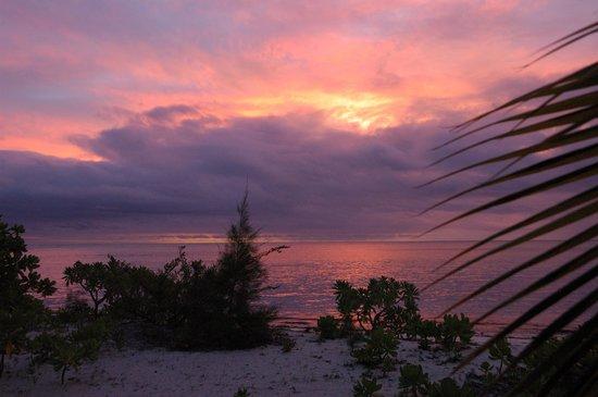 Desroches Island: Desroches - 4