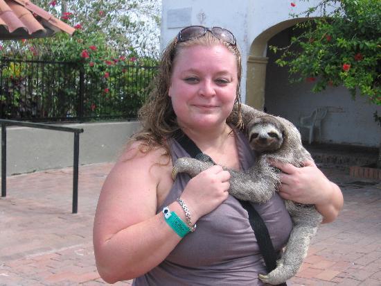 Decameron Cartagena: Moi et gentil paresseux