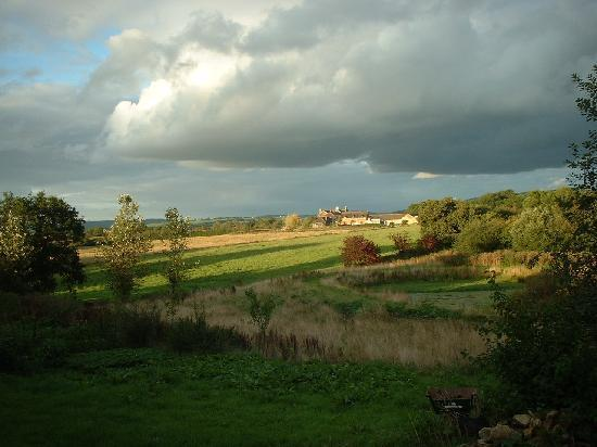 The Glen B & B: View from the back garden