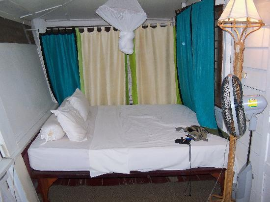 Boddhi Tree Guesthouse: my room...