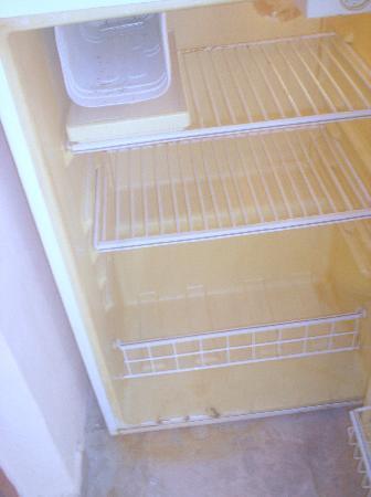 Serena Suites: fridge