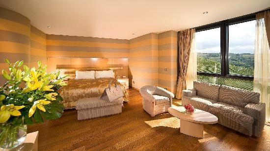 il boscareto resort spa updated 2018 prices hotel reviews serralunga d 39 alba italy. Black Bedroom Furniture Sets. Home Design Ideas