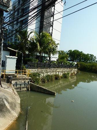 ป่าตอง พาราดี รีสอร์ท: vue sur le ruisseau
