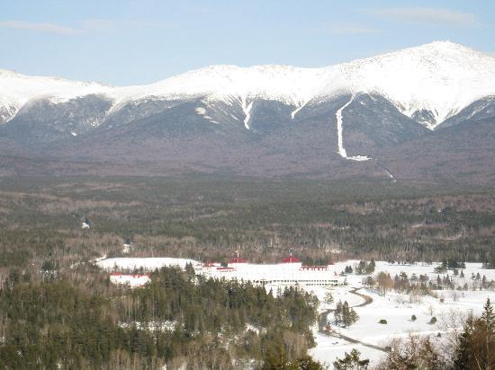 Bretton Woods: View from one of the treetops