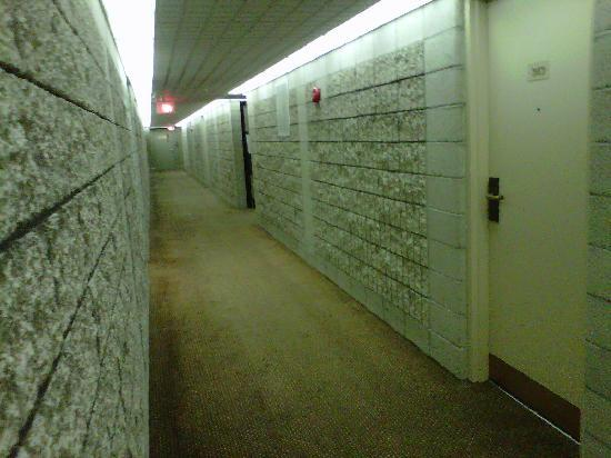 Executive Royal Hotel Edmonton: Jail Looking Hallways